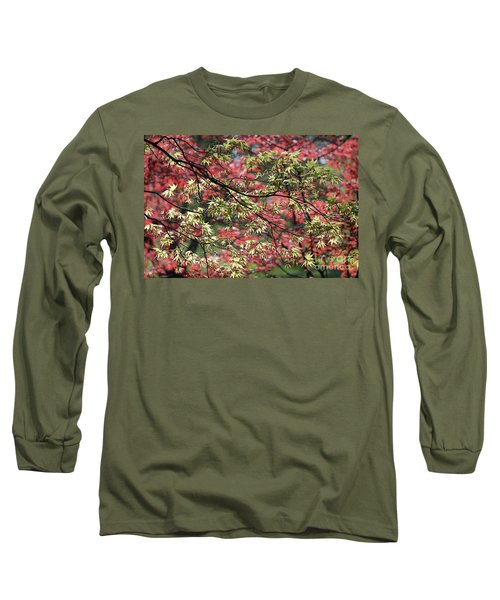 Acer Leaves In Spring Long Sleeve T-Shirt