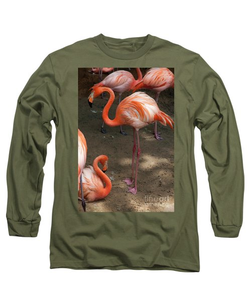 African Lesser Flamingos, Ft. Worth Zoo Long Sleeve T-Shirt