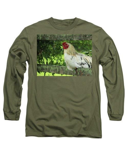 Afternoon Siesta Long Sleeve T-Shirt by Rowana Ray