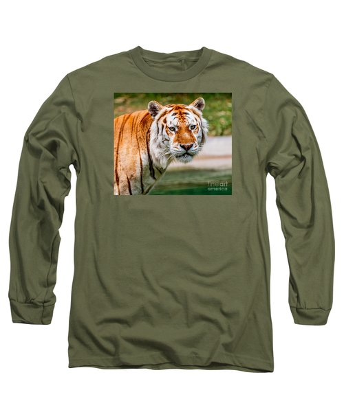 Aging Tiger Long Sleeve T-Shirt