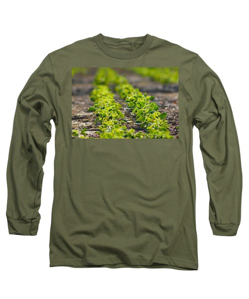 Agriculture- Soybeans 1 Long Sleeve T-Shirt