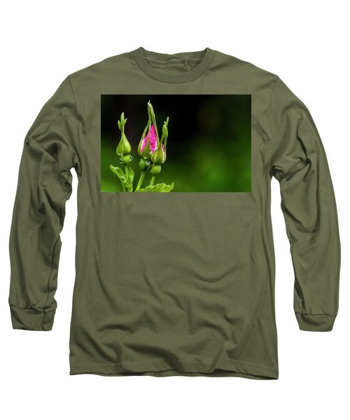 Long Sleeve T-Shirt featuring the photograph Alberta Rose Buds by Darcy Michaelchuk
