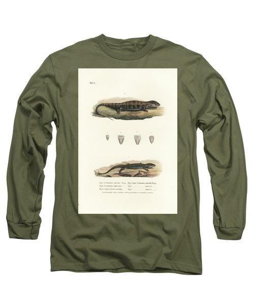 Alligator Lizards From Mexico Long Sleeve T-Shirt by Friedrich August Schmidt