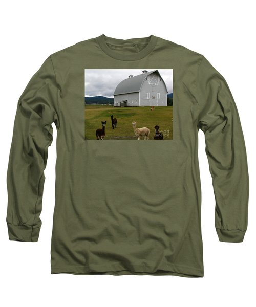 Alpacas Long Sleeve T-Shirt by Greg Patzer