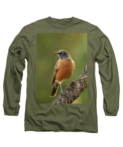 American Robin Long Sleeve T-Shirt by Doug Herr