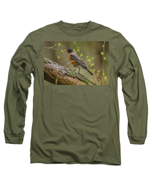 American Robin Long Sleeve T-Shirt by Ray Congrove
