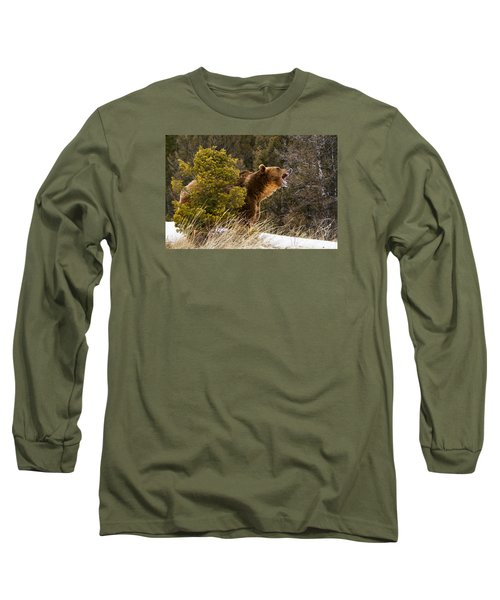 Angry Grizzly Behind Tree Long Sleeve T-Shirt
