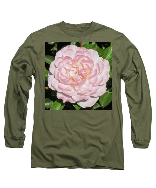 Antique Pink Rose Long Sleeve T-Shirt by Mark Barclay
