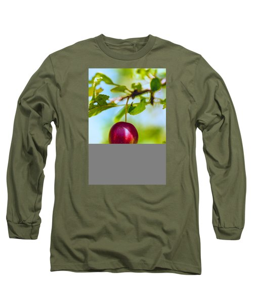Long Sleeve T-Shirt featuring the photograph  Crab Apple by Constantine Gregory