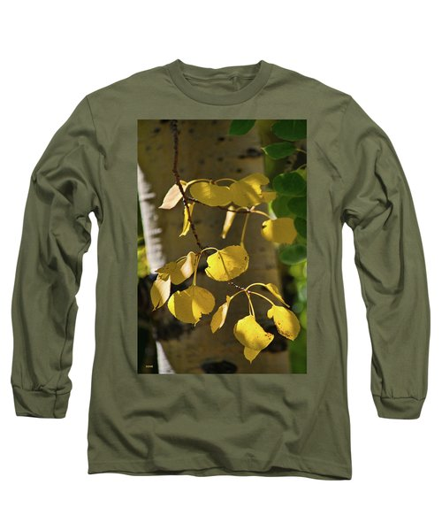 Aspen Closeup Long Sleeve T-Shirt