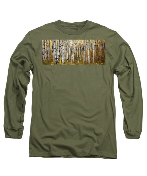 Aspen Tree Grove Long Sleeve T-Shirt by Ron Dahlquist - Printscapes