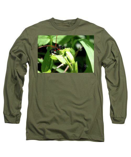 Assassin Bug Long Sleeve T-Shirt by Meta Gatschenberger