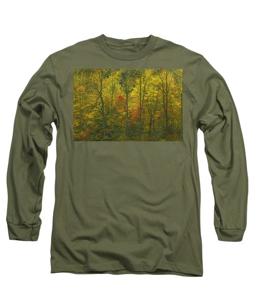 At The Edge Of The Forest Long Sleeve T-Shirt by Ulrich Burkhalter