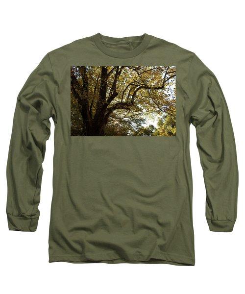Autumn Branches Long Sleeve T-Shirt