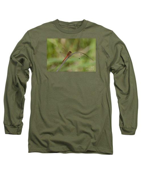 Autumn Meadowhawk Long Sleeve T-Shirt by Randy Bodkins