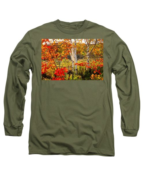 Autumn Scene With Red Leaves And White Birch Trees, Nova Scotia Long Sleeve T-Shirt