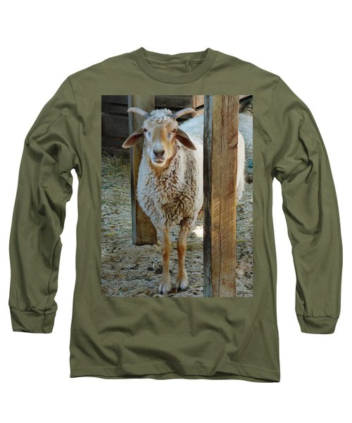 Awassi Sheep Long Sleeve T-Shirt