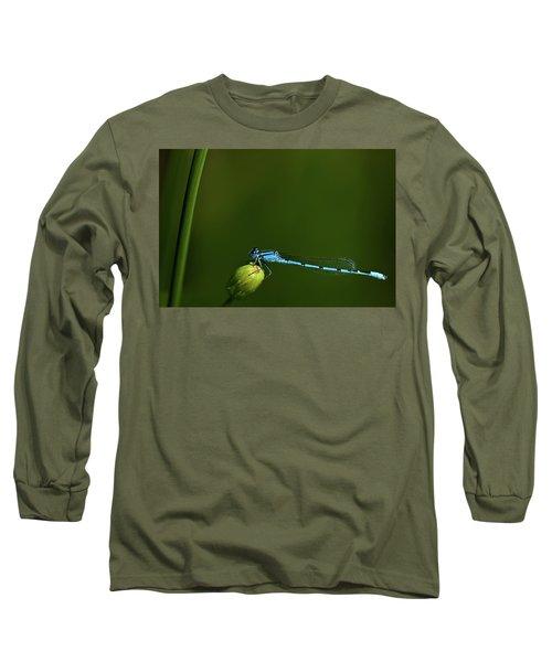 Azure Damselfly-coenagrion Puella Long Sleeve T-Shirt