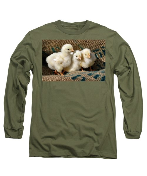 Baby Chicks Long Sleeve T-Shirt