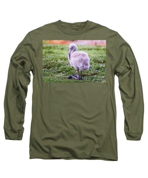 Baby Flamingo Sitting Long Sleeve T-Shirt