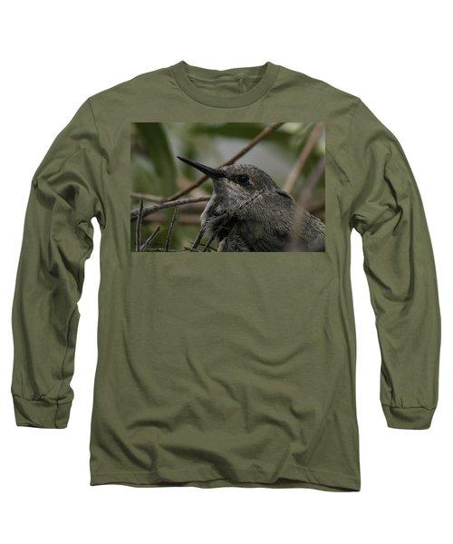 Baby Humming Bird Long Sleeve T-Shirt by Lynn Geoffroy