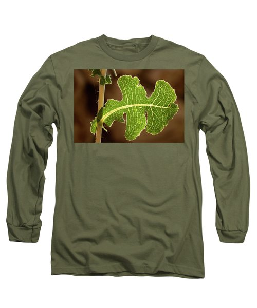Long Sleeve T-Shirt featuring the photograph Back Side Light On A Leaf At Sunset by Yoel Koskas