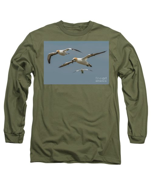Long Sleeve T-Shirt featuring the photograph Back To The Colony by Werner Padarin