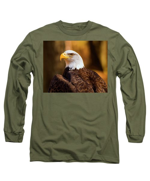 Bald Eagle 2 Long Sleeve T-Shirt