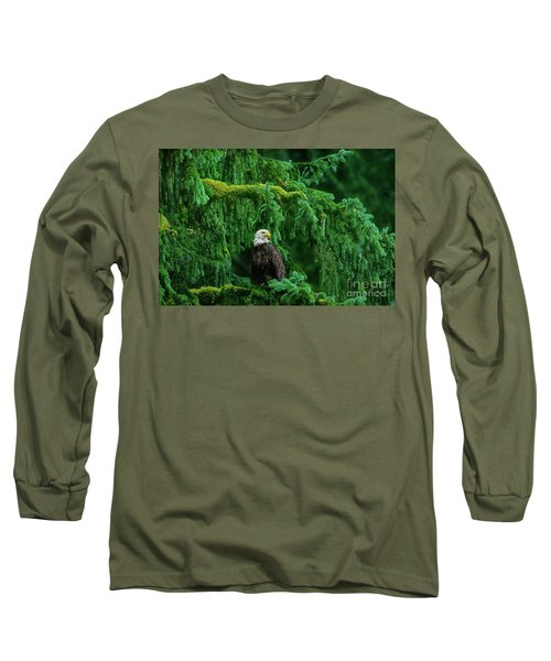 Long Sleeve T-Shirt featuring the photograph Bald Eagle In Temperate Rainforest Alaska Endangered Species by Dave Welling