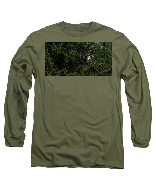Bald Eagle In The Tree Long Sleeve T-Shirt by Timothy Latta