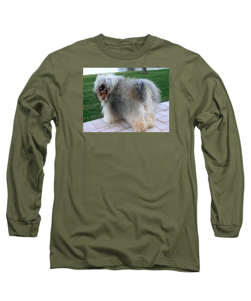 Long Sleeve T-Shirt featuring the photograph ball of fur Havanese dog by Sally Weigand