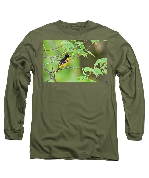 Baltimore Oriole Long Sleeve T-Shirt by Michael Peychich