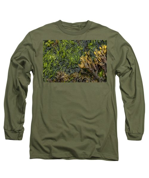 Long Sleeve T-Shirt featuring the photograph Bar Harbor Maine Coastal Life by Kevin Blackburn