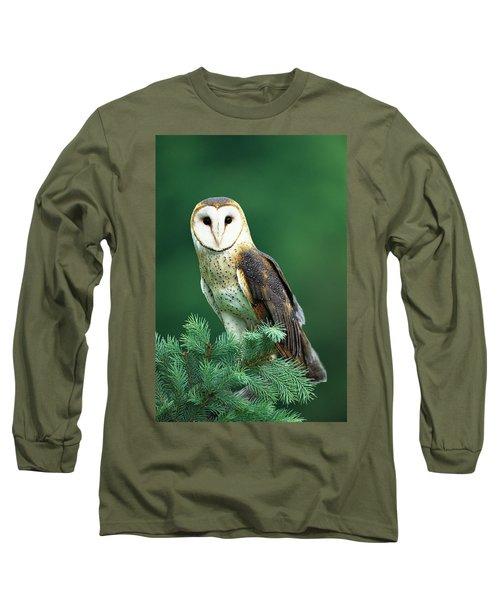 Barn Owl Tyto Alba Portrait, Hudson Long Sleeve T-Shirt