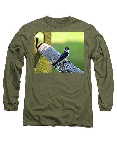 Barn Swallow Looking Angry Long Sleeve T-Shirt by Ronda Ryan