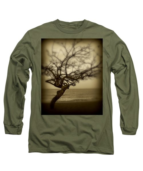 Beach Tree Long Sleeve T-Shirt by Perry Webster