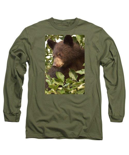Bear Cub In Apple Tree1 Long Sleeve T-Shirt by Loni Collins