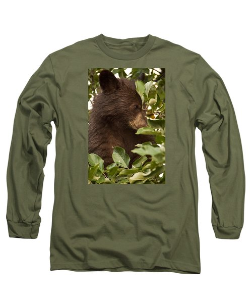 Bear Cub In Apple Tree3 Long Sleeve T-Shirt by Loni Collins