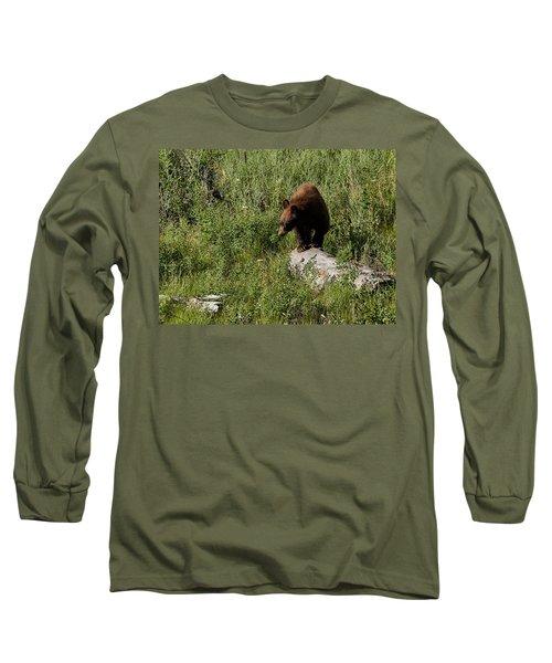 Bear1 Long Sleeve T-Shirt by Loni Collins