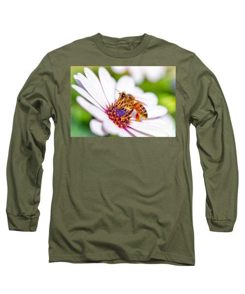 Beautiful Bee On Daisy Long Sleeve T-Shirt