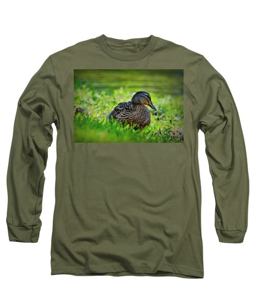 Long Sleeve T-Shirt featuring the photograph Beautiful Mama Duck by Linda Unger