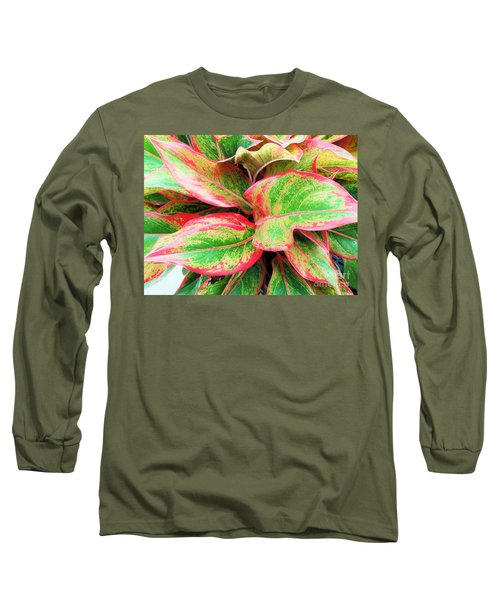Long Sleeve T-Shirt featuring the photograph Beautiful Red Aglaonema by Ray Shrewsberry