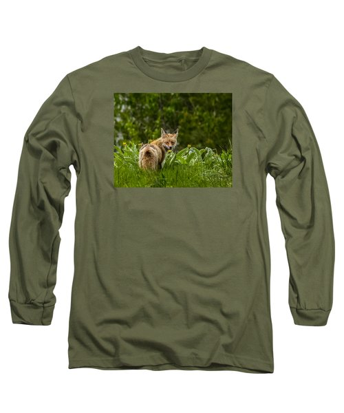 Long Sleeve T-Shirt featuring the photograph Beaver Creek Mama Fox In Spring by Yeates Photography