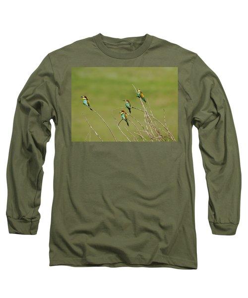 Bee Eaters  Long Sleeve T-Shirt
