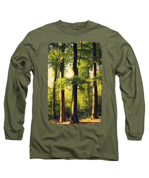 Beech Tree Forest In Evening Light Long Sleeve T-Shirt