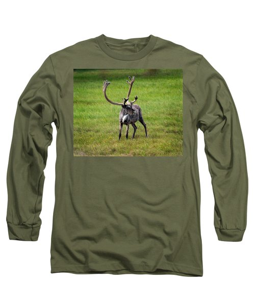 Big Horn Long Sleeve T-Shirt