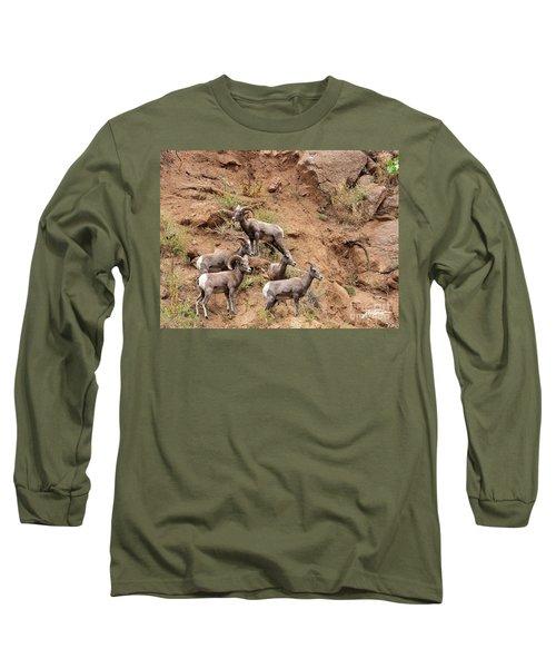 Big Horn Sheep Family Long Sleeve T-Shirt