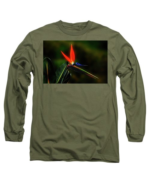 Long Sleeve T-Shirt featuring the photograph Bird Of Pardise by Joseph Hollingsworth