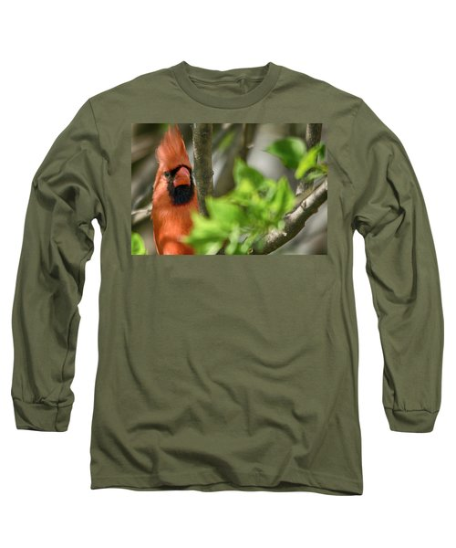 Bird's Eye Long Sleeve T-Shirt