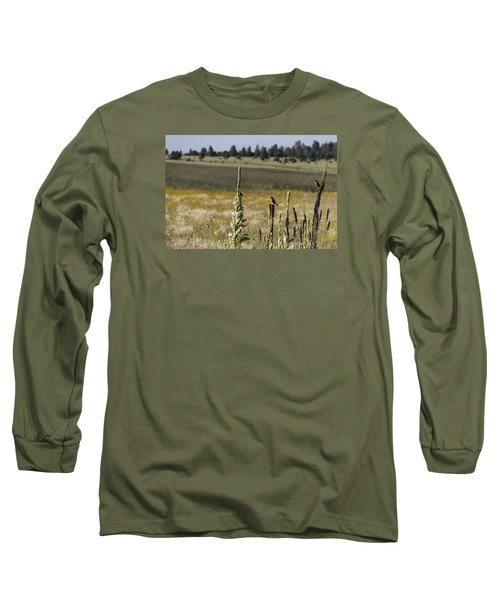 Long Sleeve T-Shirt featuring the photograph Birds On Stands by Laura Pratt